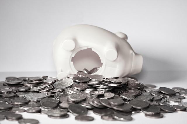 prasátko mince